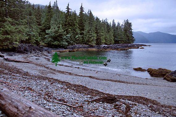 Tanu, T'aanuu Lnagaay, Laskeek Bay, Haida Heritage Site, Gwaii Haanas National Park,   British Columbia, Canada CM11-01