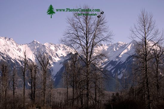 Hazelton Mountain Range, British Columbia CM11-06