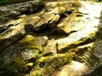 Thorsen Creek Valley Petroglyphs, British Columbia, Canada 12