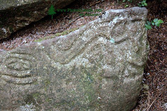 Thorsen Creek Petroglyphs, Bella Coola, British Columbia CM11-001