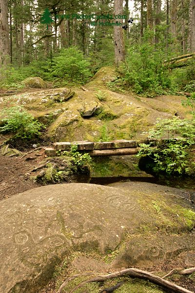 Thorsen Creek Petroglyphs, Bella Coola, British Columbia CM11-008