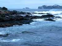 Twillingate, Atlantic Coast, Newfoundland, Canada 14
