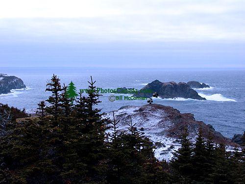Twillingate, Atlantic Coast, Newfoundland, Canada 09