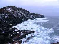 Twillingate, Atlantic Coast, Newfoundland, Canada 04