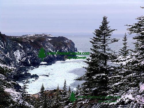 Twillingate, Atlantic Coast, Newfoundland, Canada 01