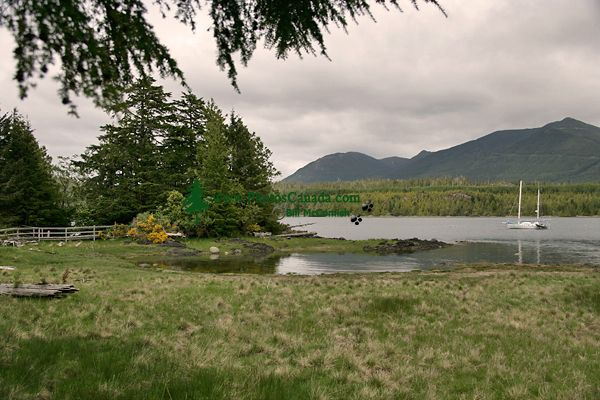 Ucluelet, Vancouver Island, British Columbia, Canada CM11-02