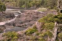 Wild Pacific Trail, Ucluelet, Vancouver Island CM11-012