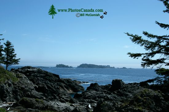 Wild Pacific Trail, Ucluelet, Vancouver Island CM11-001
