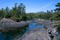 Wild Pacific Trail, Ucluelet, Vancouver Island CM11-004
