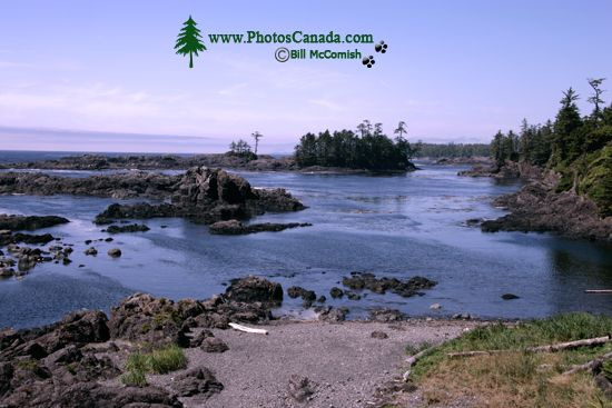 Wild Pacific Trail, Ucluelet, Vancouver Island CM11-007