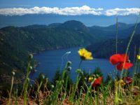 Malahat, Coastal Fjord, British Columbia, Canada  08