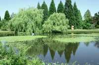 Vandusen Gardens, Vancouver, British Columbia CM11-02