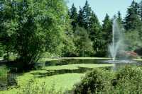 Vandusen Gardens, Vancouver, British Columbia CM11-05