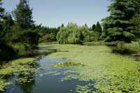 Vandusen Gardens, Vancouver, British Columbia CM11-06