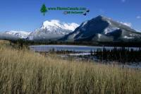 Highlight for Album: Vermillion Lakes Photos 2009, Banff National Park, Alberta, Banff National Park Stock Photos