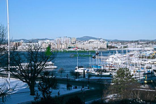 Victoria, Inner Harbour,  British Columbia, Canada CM11-04