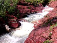 Red Rock Canyon, Waterton Lakes National Park, Alberta, Canada 15