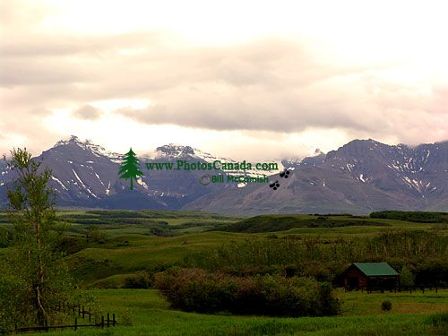 Southern Rocky Mountains,  Waterton Lakes National Park, Alberta, Canada 04