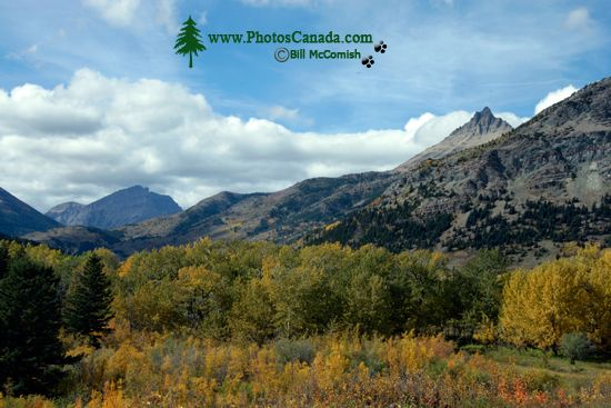 Waterton Lakes National Park, Fall 2010, Alberta, Canada CM11-008