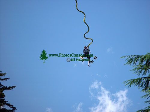 Bungee Jump, Whistler, British Columbia, Canada 02