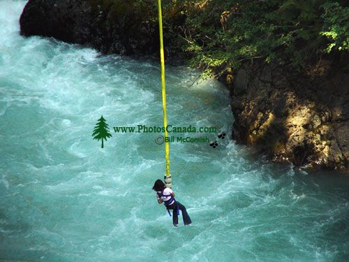 Bungee Jump, Whistler, British Columbia, Canada 03