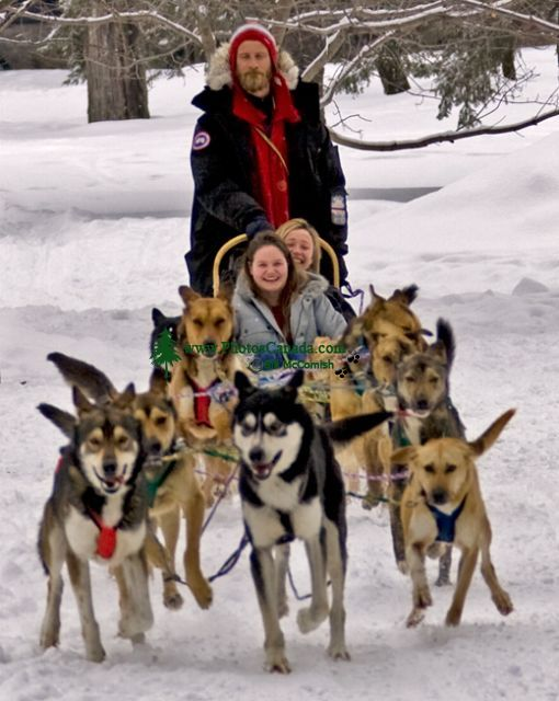 Dogsledding CM11-08