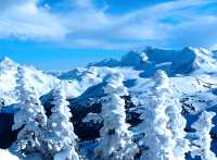 Whistler, British Columbia, Canada 32