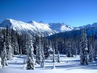 Whistler, British Columbia, Canada 19