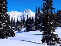 Whistler, British Columbia, Canada 25