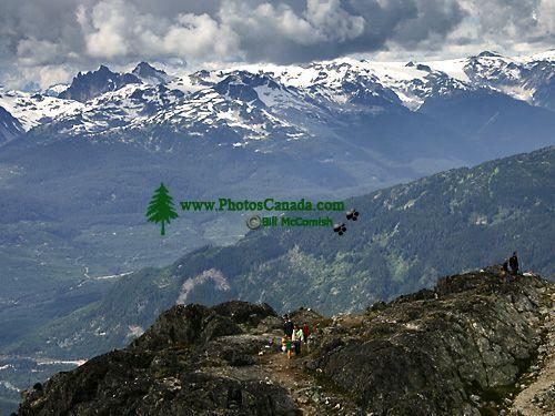Whistler Alpine, British Columbia, Canada, CM11-05