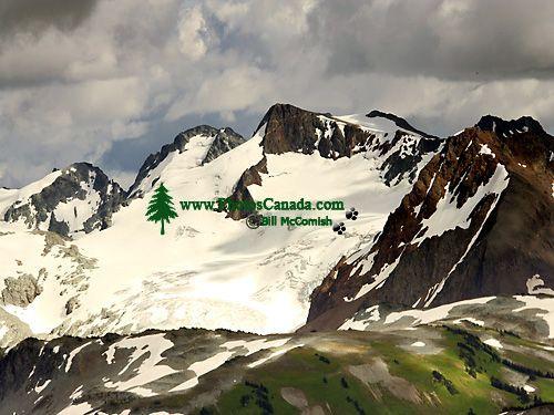 Whistler Alpine, British Columbia, Canada, CM11-03