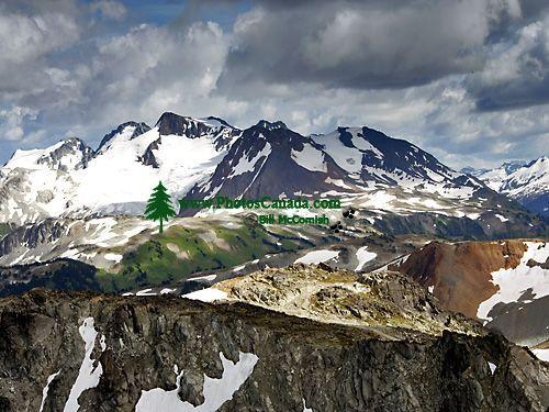 Whistler Alpine, British Columbia, Canada, CM11-02