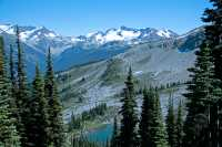 Whistler Alpine, British Columbia, Canada, CM11-18