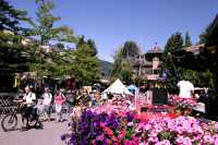 Whistler Village, 2010 Olympic Host City, British Columbia, Canada CM11-005