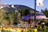 Whistler Village, British Columbia, Canada CMX-003