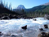 Kicking Horse River, Yoho National Park, British Columbia, Canada 05