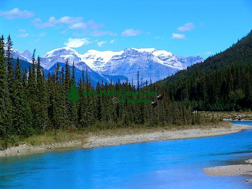 Yoho National Park,  British Columbia, Canada 04