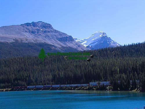 Yoho National Park, British Columbia, Canada 02