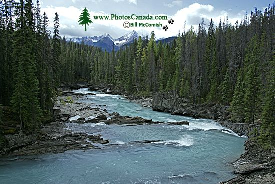 Kicking Horse River, Yoho National Park, 2011, British Columbia, Canada CM11-024