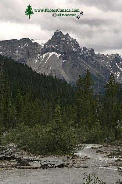 Yoho National Park, 2011, British Columbia, Canada CM11-021