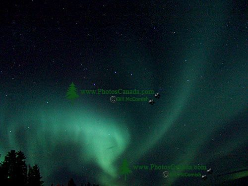 Aurora Borealis, Northern Lights, Yukon, Canada   28