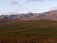 Dempster Highway, Yukon, Canada   25