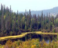 Klondike Highway, Yukon, Canada  08